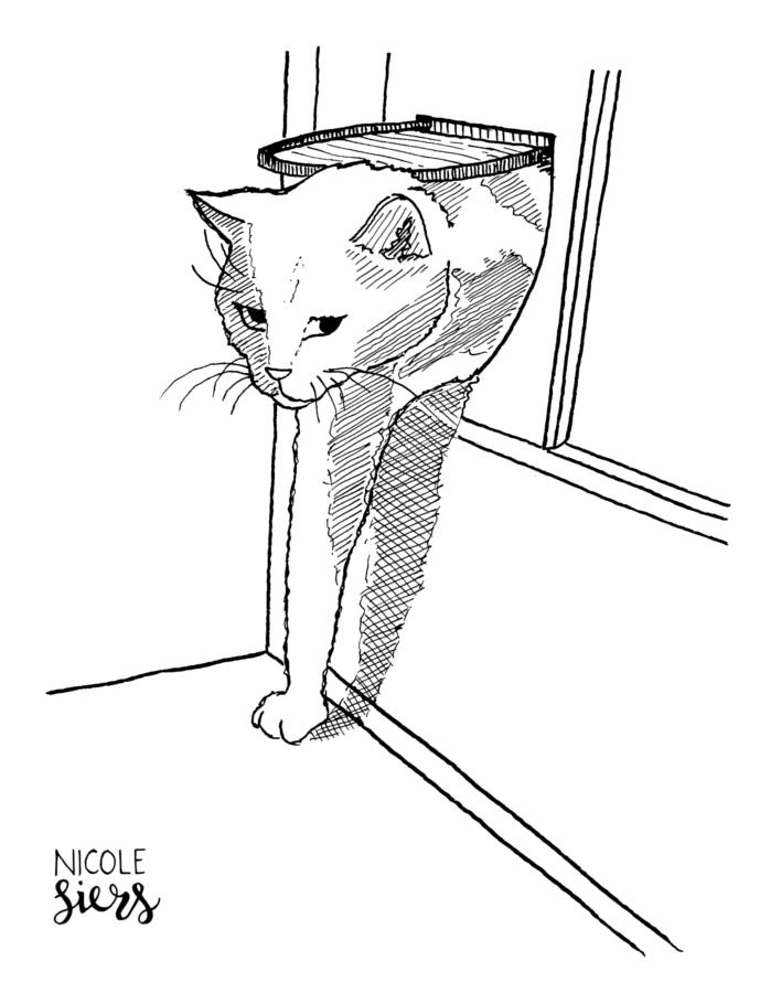 cat kat judas cats katten tekening pendrawing kattenluik Illustrator Amsterdam